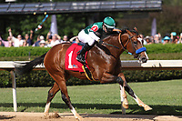 HOT SPRINGS, AR - April 15: Cistron #1 and jockey Tyler Baze lead the field after the start of the Northern Spur Stakes at Oaklawn Park on April 15, 2017 in Hot Springs, AR. (Photo by Ciara Bowen/Eclipse Sportswire/Getty Images)