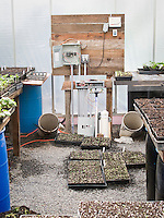Production greenhouse for organic vegetable starts with pipe outflow for earth cooling air conditioning system at Singing Frogs Farm;
