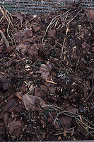 Making Compost, Stage 2 of 3, second in a series of decomposition, showing partially decomposed compost heap. See also accompanying stock photos of stages 1 and 3.