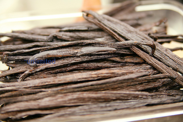 Vanilla pods (Vanilla planifolia)