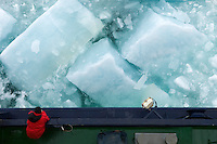 Arctic sea ice can range up to thirteen feet thick. The Icebreaker Oden busted the solid ice cover into smaller but still massive blocks of ice, the smaller ones the size of SUVs and the larger ones as big as houses. As the ship moves the newly made chunks of ice slide along the ship's sides, showing their ice-blue undersides.