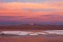 Bolivia, Altiplano, Laguna Colorada at sunset; the salt lake contains borax islands, whose white color contrasts with the reddish color of its waters, which is caused by red sediments and pigmentation of some algae.