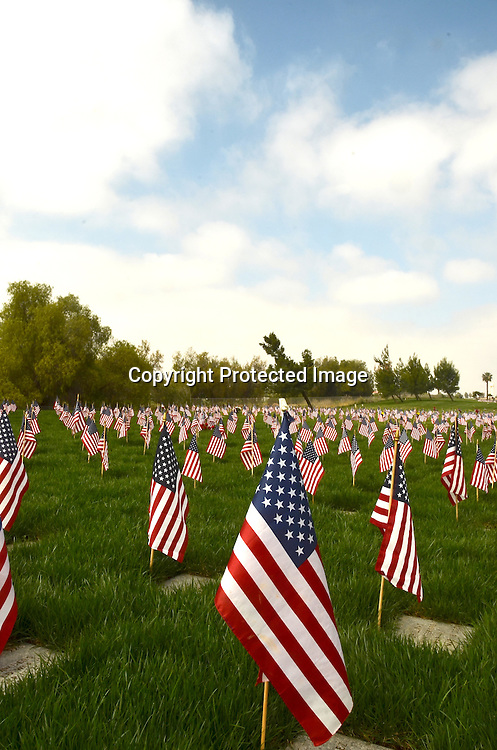 Stock photograph of Military Graves