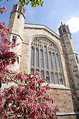 Law School in spring. 5/03/06