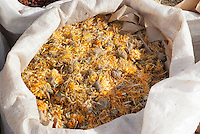 Plant for dying Pot marigold (Calendula) dried for dyes, Apothecary Garden, Medicinal Plant