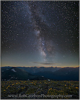 On a cold July evening high atop Rocky Mountain National Park, the Milky Way rises over a rocky field of wildflowers. Taken just after sunset, this view looks south on a clear night.