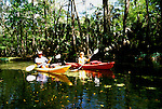 Florida, Tampa: Kayakaing on the Hillsborough River.  Photo #: tampas103..Photo copyright Lee Foster, www.fostertravel.com, 510/549-2202, lee@fostertravel.com