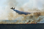 ISRAEL, Carmel Forest : A Canadair firefighter plane sprays its load of water over flames in the Carmel Forest on the outskirts of Haifa on December 3, 2010 as thousands of Israeli firemen and rescuers fight to control the massive forest fire that has already killed 41, as global help poured in to battle the biggest inferno in the country's history.© ALESSIO ROMENZI