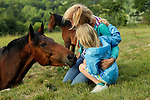 Europe, Ireland, Enniskerry. Horse encounter near Powerscourt in Enniskerry.