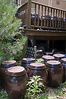 Soy Sauce in Ginger Jars made from backyard soybeans, storing terracotta containers next to house and under deck