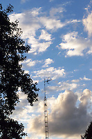 "A ""Corot"" sky with dark, silhouetted trees and TV antenna."