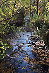 Menomonee River flowing through a tree covered dells area during the Fall Season, Wisconsin