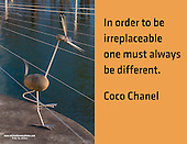 Quote:  In order to be irreplaceable one must always be different.  By Coco Chanel.  Meme.