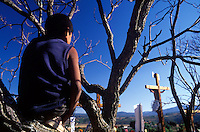 Boy watches from a tree as jesus´crucifiction is re-enacted for holy week (Semana Santa) in Erongaricuaro, Michoacan, Mexico