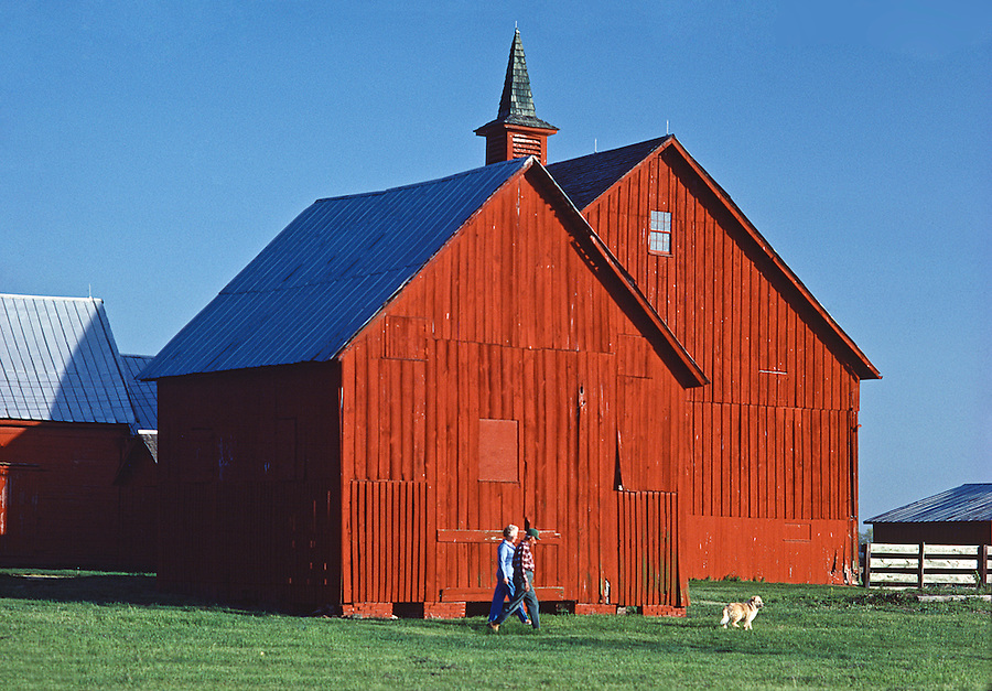 Farm Couple Near Dover, Delaware, Walking by Red Barn