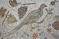 Detail of a mosaic depicting a bird in the Villa of the Aviary,  Carthage, Tunisia, pictured on January 27, 2008, in the morning. Carthage was founded in 814 BC by the Phoenicians who fought three Punic Wars against the Romans over this immensely important Mediterranean harbour. The Romans finally conquered the city in 146 BC. Subsequently it was conquered by the Vandals and the Byzantine Empire. Today it is a UNESCO World Heritage. The Roman Villa of the Aviary, with its octagonal garden set in a peristyle courtyard, is known for its fine mosaics depicting birds. Picture by Manuel Cohen.
