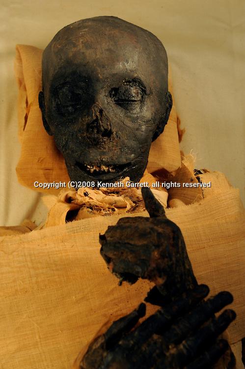 Hatshepsut; Egypt; Egyptian Museum; Thutmosis III mummy; New Kingdom; 18th dynasty