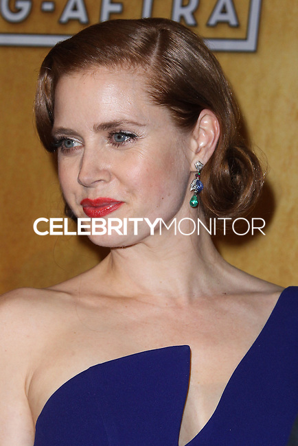 LOS ANGELES, CA - JANUARY 18: Amy Adams in the press room at the 20th Annual Screen Actors Guild Awards held at The Shrine Auditorium on January 18, 2014 in Los Angeles, California. (Photo by Xavier Collin/Celebrity Monitor)