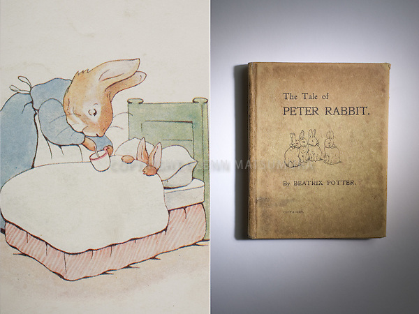 The tale of Peter Rabbit by Beatrix Potter book and detail. Stanford Archives