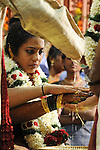 Cochin, India. Wedding day.