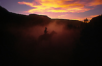 Smothered in dust, a cowboy works the last bit of light of the day moving cattle on a BLM grazing allotment in southern Utah.