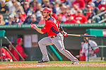 2 March 2013: Washington Nationals infielder Will Rhymes singles during a Spring Training game against the St. Louis Cardinals at Roger Dean Stadium in Jupiter, Florida. The Nationals defeated the Cardinals 6-2 in their first meeting since the NLDS series in October of 2012. Mandatory Credit: Ed Wolfstein Photo *** RAW (NEF) Image File Available ***