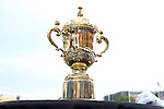 17 August 2013: The Webb Ellis Cup on display before the game. The Webb Ellis Cup is awarded to the winner of the Rugby Union World Cup. The United States Men's National Rugby Team played the Canada Men's Nationa Rugby Team at Blackbaud Stadium in Charleston, South Carolina in the first leg of their 2015 Rugby World Cup Qualifying Series. Canada won the game 27-9.