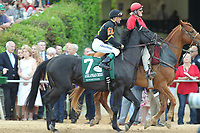 HOT SPRINGS, AR - APRIL 15: Sonneteer #7, with jockey Kent Desormeaux aboard before the running of the Arkansas Derby at Oaklawn Park on April 15, 2017 in Hot Springs, Arkansas. (Photo by Justin Manning/Eclipse Sportswire/Getty Images)