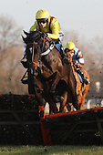 Glen Countess ridden by Brendan Powell in jumping action during the Timmy Jones Keep The Faith Memorial Mares Novices Hurdle - Horse Racing at Huntingdon Racecourse, Cambridgeshire - 23/02/12- MANDATORY CREDIT: Gavin Ellis/TGSPHOTO - Self billing applies where appropriate - 0845 094 6026 - contact@tgsphoto.co.uk - NO UNPAID USE.