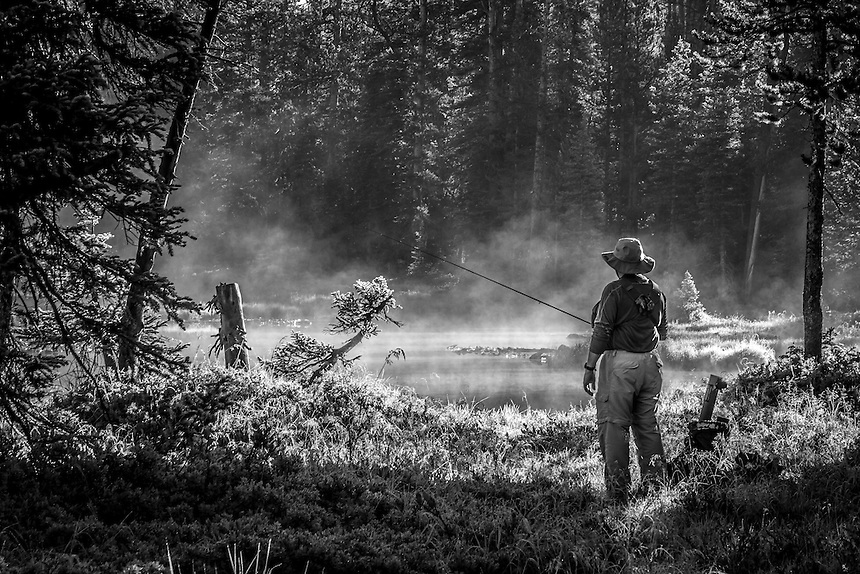 Fly fisherman prepares and studies the water of a utah backcountry