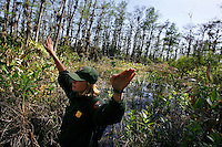 Everglades, Fla. -- Feb. 18, 2007 -- Park ranger Corinne Fenner talks about the flight of a vulture while leading a swamp hike near the Oasis Visitor Center in the Big Cypress National Preserve just north of Everglades National Park on the southern tip of Florida on Sunday, Feb. 18, 2007.