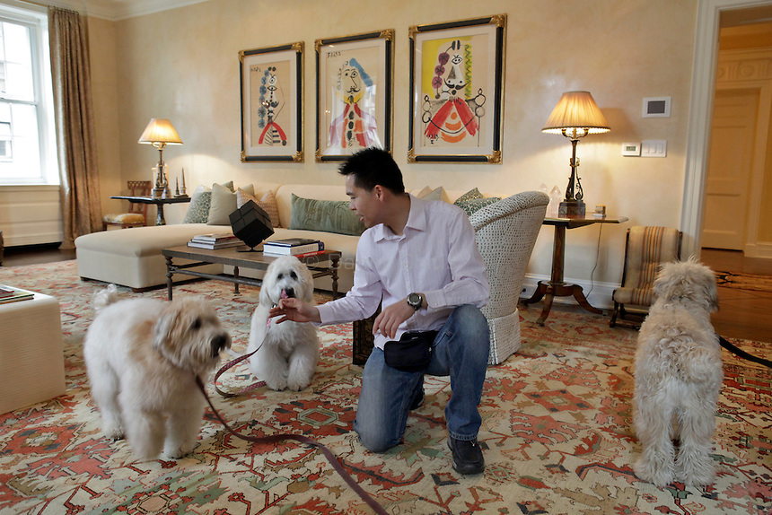 Ming Tam, an employee at Vancouver Dog Training handles three wheaten terriers in an apartment on the Upper East Side of Manhattan on April 5, 2011. ..Danny Ghitis for The New York Times