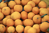 Grapefruit (Citrus × paradisi),subtropical citrus fruit, Yellow, Orange