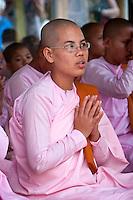 Myanmar, Burma.  Shwedagon Pagoda, Yangon, Rangoon.  Buddhist Nuns Praying.