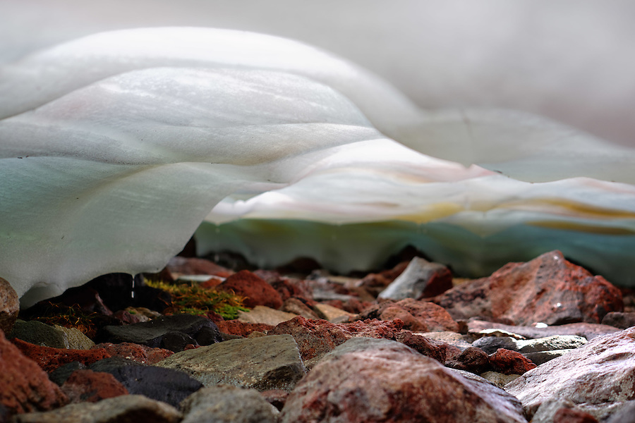 Melting water dripping from under snowfield onto rocks, Spray Park, Mount Rainier National Park, Washington State, USA