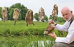 Foto: VidiPhoto<br /> <br /> COTHEN - De spreeuw en muskusrat mogen terug op het menu van restaurant de Pronckheer in Cothen. Provinciale Staten van Utrecht hebben eind vorige maand besloten het opeten van bejaagde diersoorten mogelijk te maken. Daar valt de spreeuw en ook de muskusrat onder, zo is donderdag bekend geworden. Eigenaar Arjan Smit van de Pronckeer zette anderhalf jaar geleden de spreeuw bewust op het menu omdat het dier wel geschoten mocht worden als schadelijk wild. Om voedselverspilling te voorkomen vindt hij dat geschoten dieren gewoon gegeten mogen worden. Mei dit jaar experimenteerde hij met muskusratten. Een meerderheid van Provinciale Staten van Utrecht is het nu met hem eens dat deze dieren ook op het menu mogen.