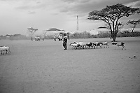 A man leads his herd of goats. Thousands of families in desperate need of food and water have trekked for days from Somalia to the Dadaab refugee camp. The drought is the worst in East Africa for 60 years. The UN described it as a humanitarian emergency. The already overcrowded complex received 1,000 new refugees a day in June, five times more than a year ago. About 30,000 people arrived at the Dadaab refugee camp in June, according to UNHCR compared to 6,000 in June 2010.