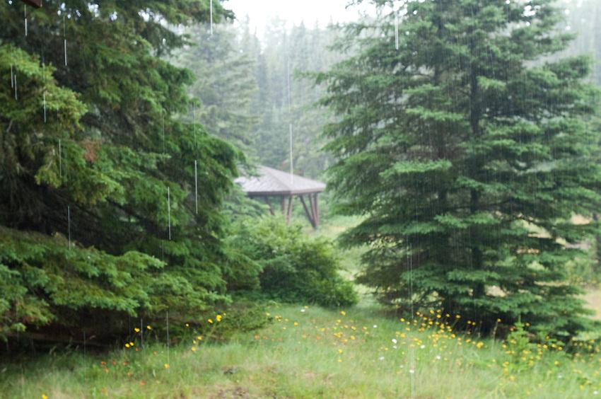 Rainy day at Isle Royale National Park.