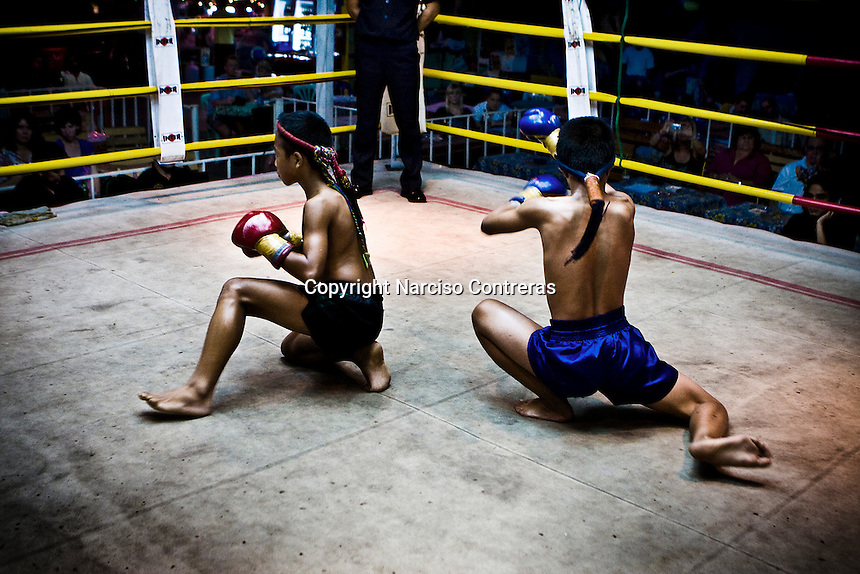 muay thai short for kid: