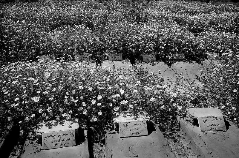 Tripoli, Libya, April 3, 2011..El Hammangi cemetery. Hundreds of illegal would be immigrants to Europe are washed away on the Libyan coast when their frail boats capsize during the perilous trip to Italy; many of those often unidentfied bodies are buried in a remote section of Hammangi old cemetery in Tripoli.