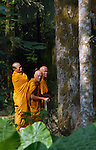 Buddhist monks take a rest in the forest at Kuangsi waterfall in Luang Prabang province, Laos.