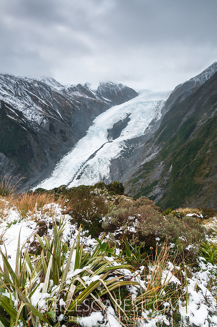 Franz Josef Glacier as seen from Castle Rock Hut on Defiance Ridge, Westland Tai Poutini National Park, UNESCO World Heritage Area, West Coast, New Zealand, NZ