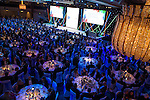 The Building Awards 2016