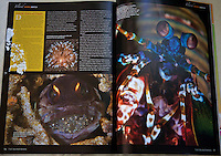 Am article in 7107 islands about muck diving in Dauin, Negros oriental. So many cool critters can be found if you look in the right places.