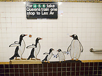 USA. New York City. Subway lines at the station on 5 Av and 59th Street in Manhattan. Penguins. Mosaic tiles on wall. 26.10.2011 © 2011 Didier Ruef