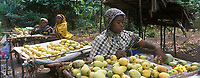 Afrique/Afrique de l'Est/Tanzanie/Zanzibar/Ile Unguja: dans un village de la Jozani Forest : Etal de fruits exotiques et marchande