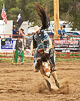 COLLEGE RODEO 2015