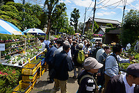 Crowds at the Omiya Bonsai Festival, Bonsai Village, Omiya, Saitama Prefecture, Japan, May 3, 2013. The Omiya Bonsai Village was founded in 1925 and is Japan's most famous production center for bonsai.