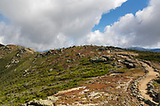 Scree wall along the Appalachian Trail (Franconia Ridge Trail) on the summit of Little Haystack Mountain in the White Mountains of New Hampshire USA during the summer months. Scree walls are built on the edge of trails to discourage hikers from going off trail. Building these small walls helps protect the fragile alpine habitat.