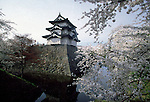 Cherry Blossoms in bloom near Kirosaki Castle, Hirosaki, Japan. Jim Bryant Photo. ©2012. All Rights Reserved.